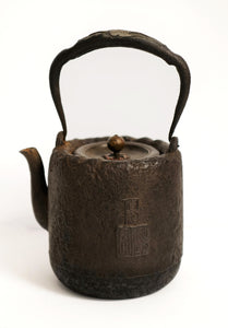 Ryubundo Iron Kettle Pot with Pattern of Wild Goose and Kanshi Poetry【龙文堂·手把挫大雁】