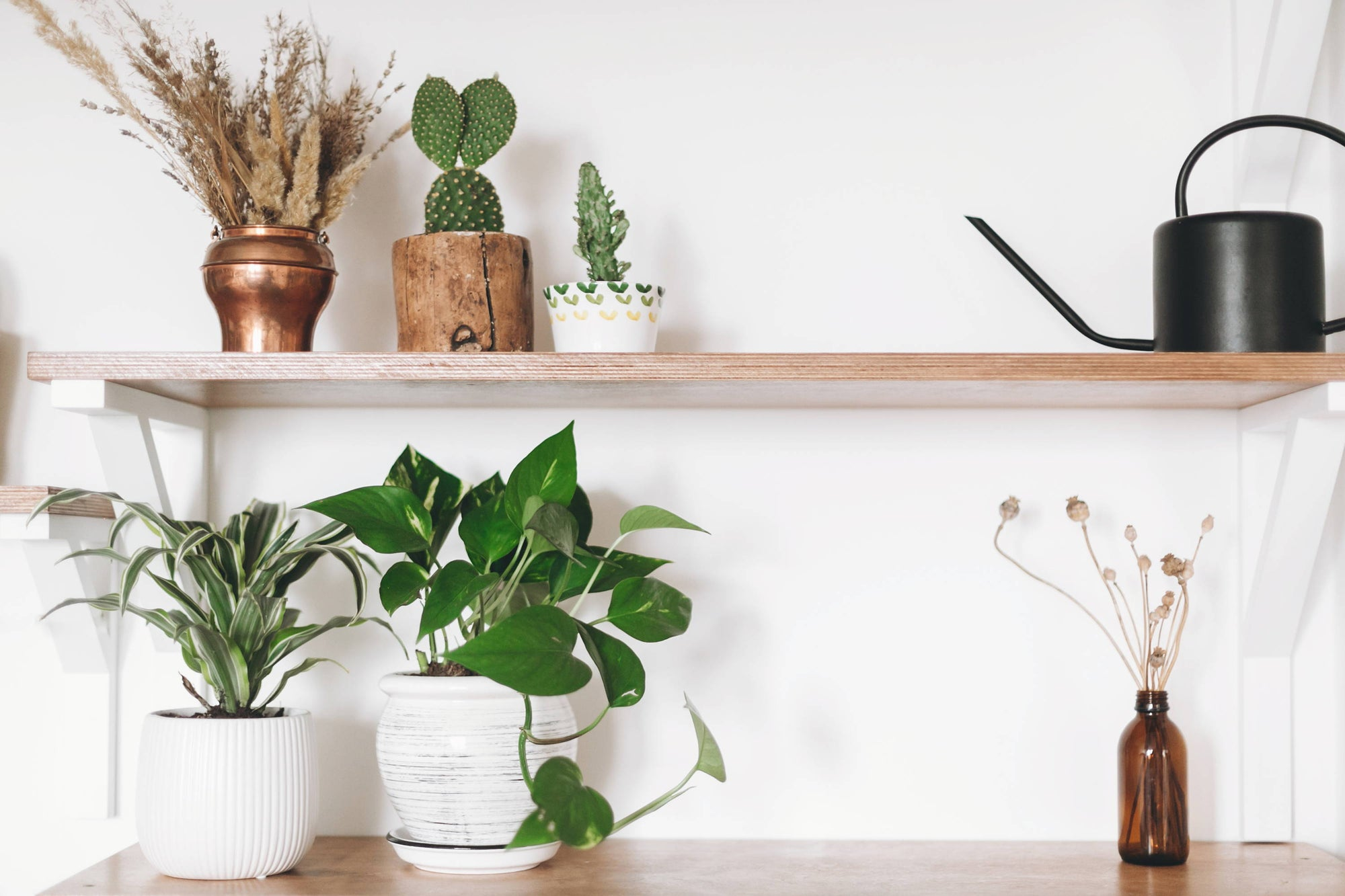 3 Ways to Cleanse Indoor Air