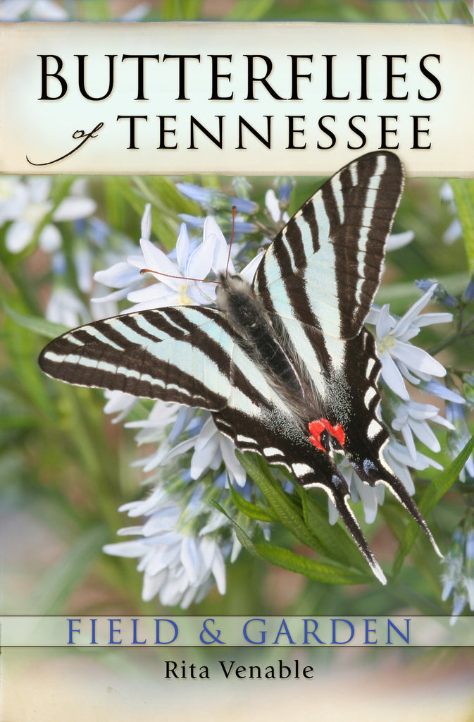 Butterflies of Tennessee