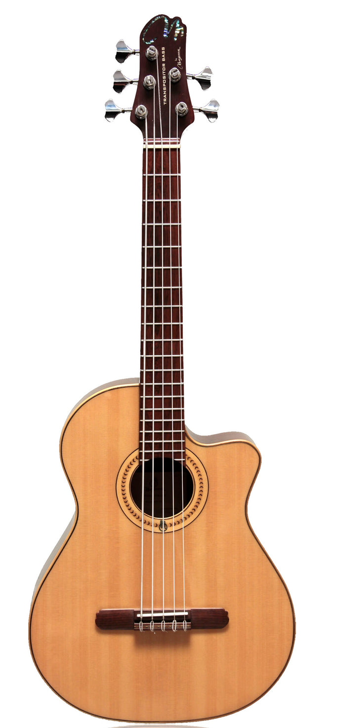 Magma Transpositor Acoustic Bass 5 Strings Nogal