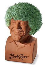 Load image into Gallery viewer, Chia Pet Bob Ross with Seed Pack