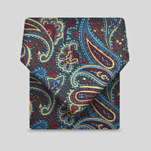 Load image into Gallery viewer, Dark Multi Paisley Classic Tie