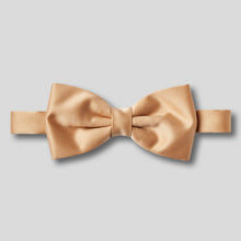 Load image into Gallery viewer, BK0030-12-Folkespeare-Beige-Plain-Satin-Classic-Bow-Tie-1