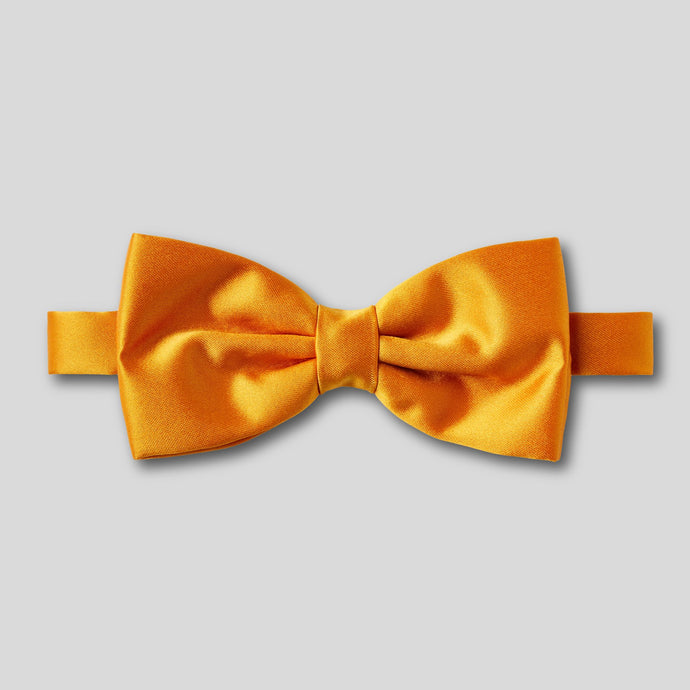 Folkespeare Burnt Orange Plain Satin Classic Bow Tie