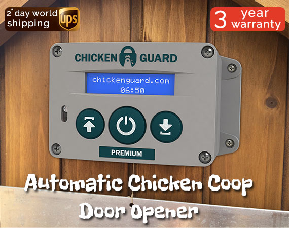 Chicken Guard