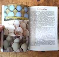 The Broody Hen Handbook - free shipping 1-2 days