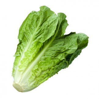 Leaf Lettuce (Each)