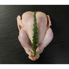 Enviroganics Organic Whole Chicken 1.5-1.8kg
