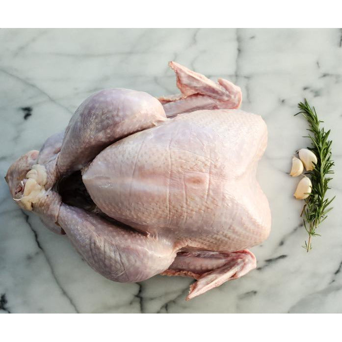Free Range Whole Turkey (3kg - 6kg)