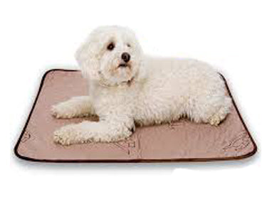 Critter Pet Absorbent Pad by Conni