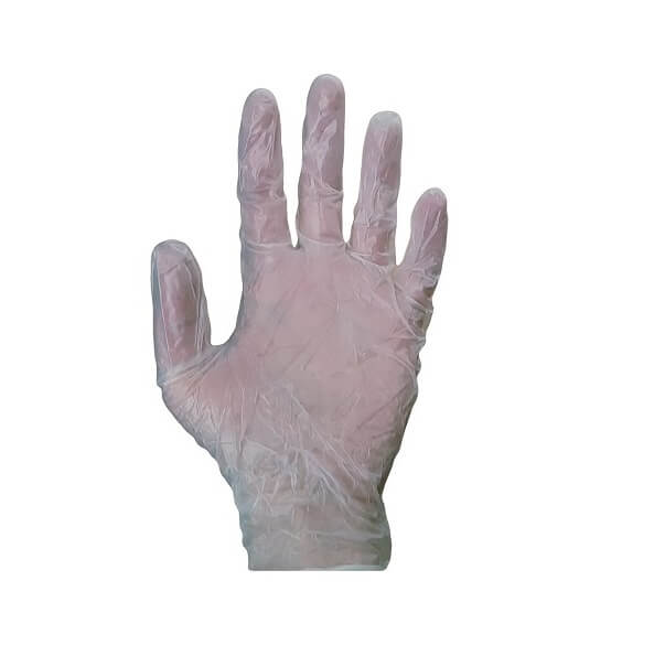 Vinyl Clear Powder Free Gloves | BSB Packaging