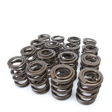 Load image into Gallery viewer, Skunk2 B-Series VTEC Pro Series Valve Springs