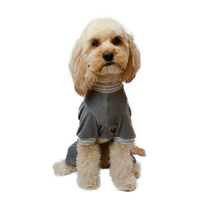 Model dog front view in 4 legged onesie in grey corduroy with striped white and grey sleeve trims