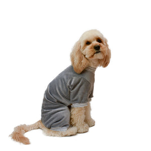 Model dog side view in 4 legged onesie in grey corduroy with striped white and grey sleeve trims