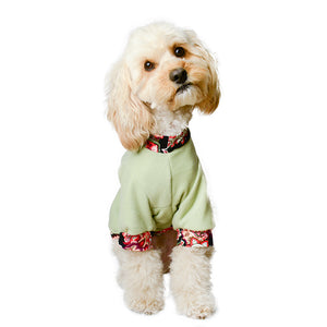 Handmade for Hounds Ascot Vale dog sweater front view