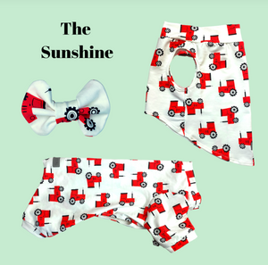 The Sunshine Onesie