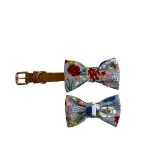 The Mentone Bow