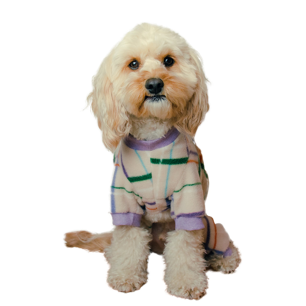 Handmade for Hounds Mount Martha dog onesie front view