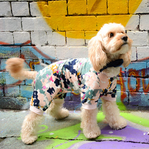 Cavoodle dog wearing the Flemington onesie in spray painted alleyway