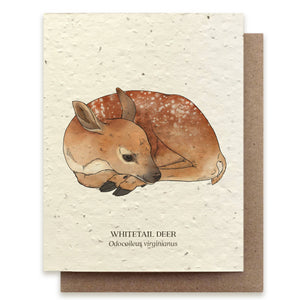 White tail deer plantable card