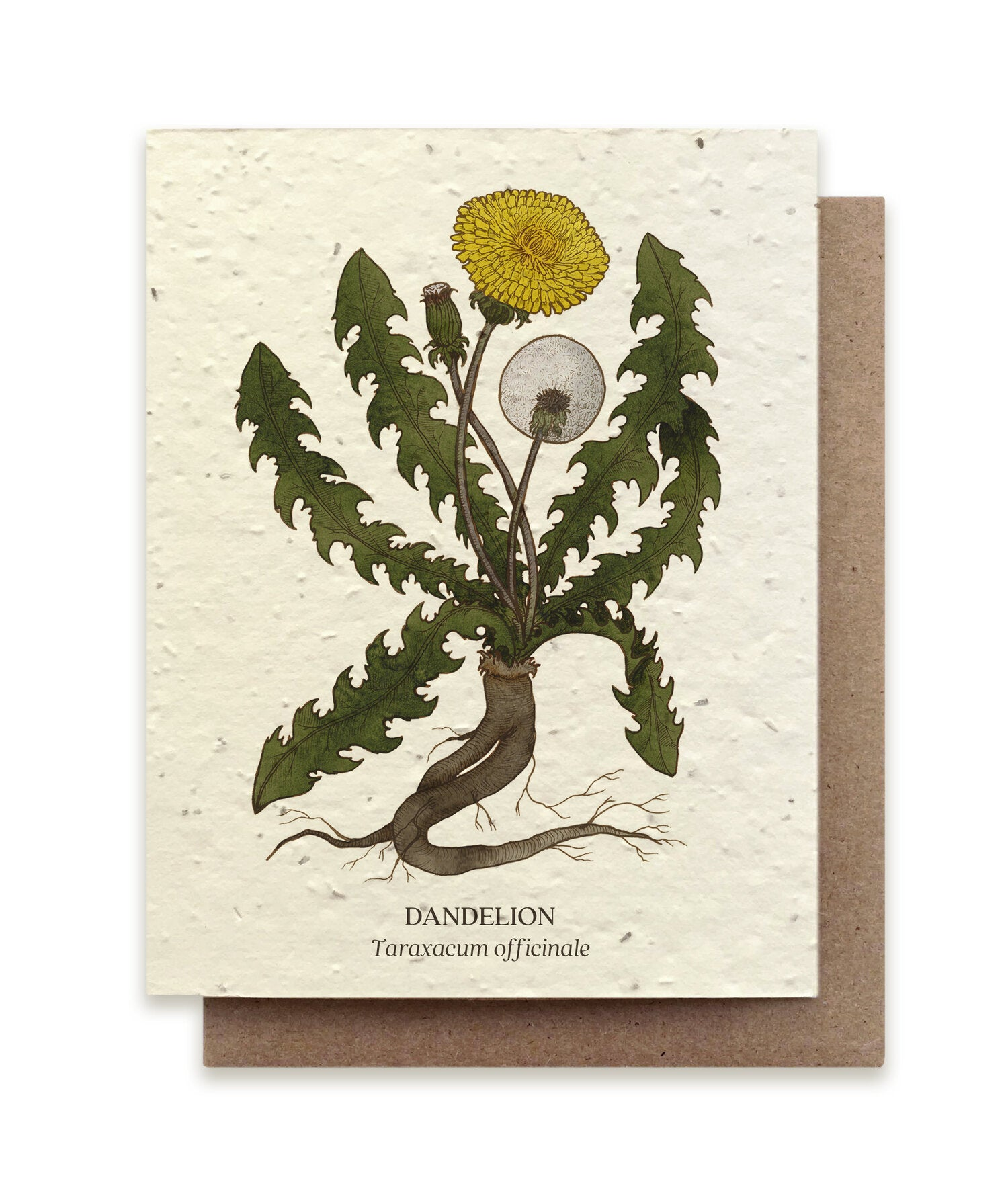 Dandelion Plantable Card
