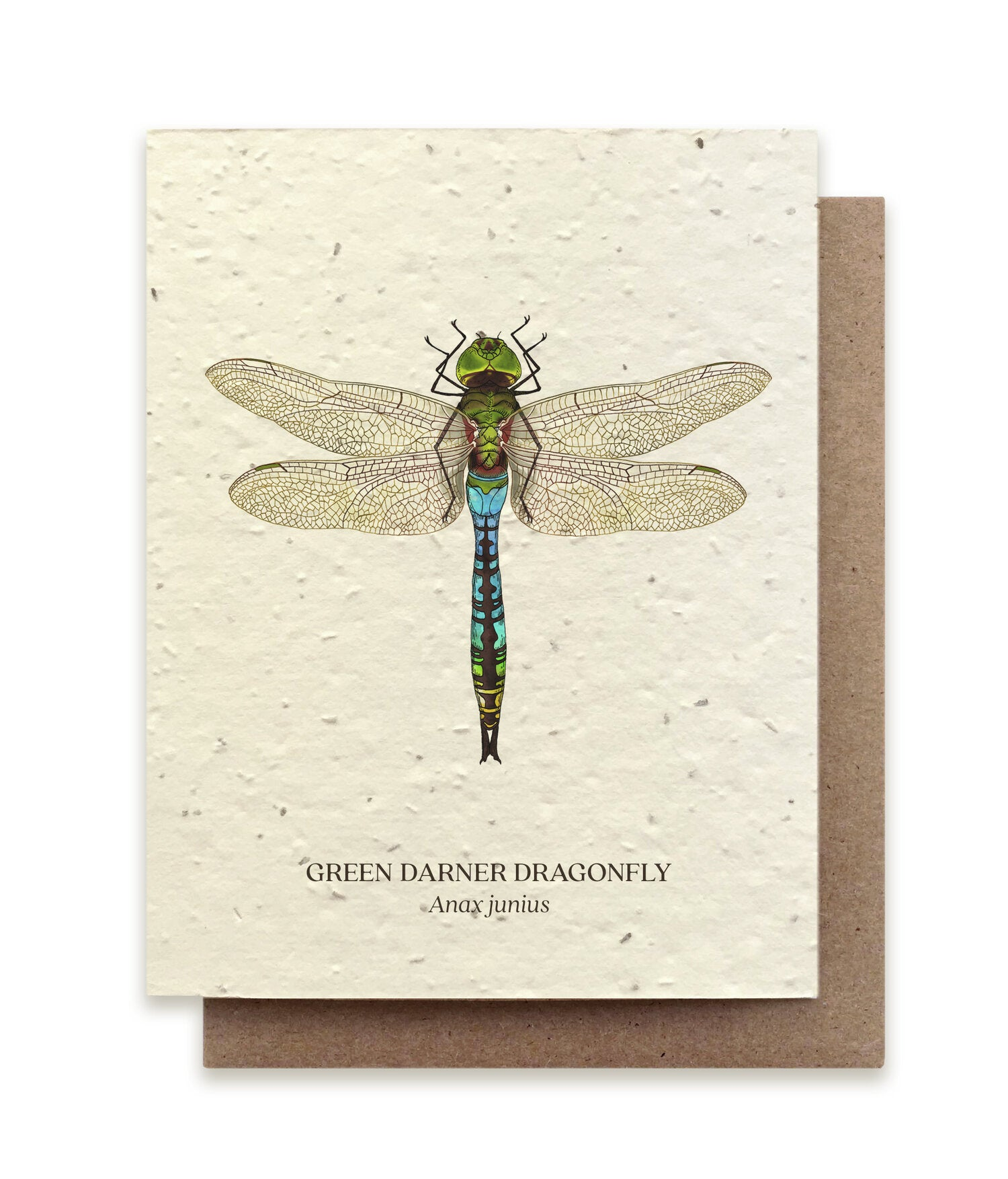 Freen darner dragonfly plantable card