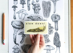 "Hello Yellow Canary ""Slow Down"" Sticker"