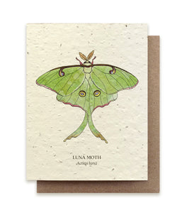 Luna Moth Plantable Card