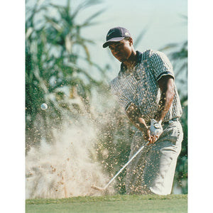 Tiger Woods Unsigned 8X10 Photo