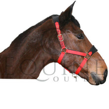 Load image into Gallery viewer, Fleece Padded Headcollar