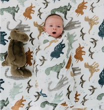 Load image into Gallery viewer, Sustainable Baby Blanket - Green 'N' Groovy - Products