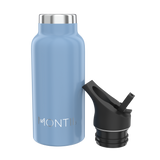 Mini Insulated Stainless Steel Bottle