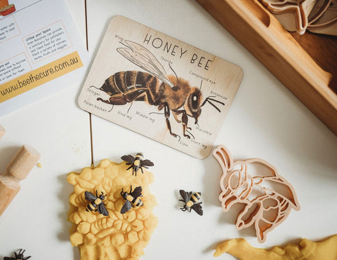 Bumblebee Eco Cutter Set
