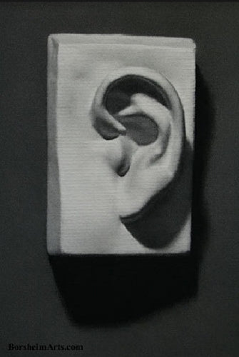 Academy Study Charcoal Drawing Ear Cast Gesso Drawing of Sculpture