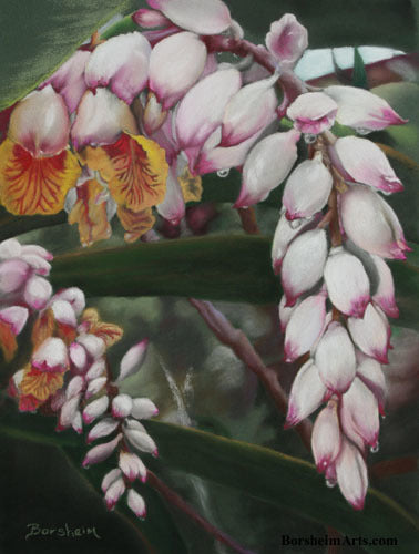 Raindrops on Shell Ginger Flowers Original Pastel Painting on Green Paper