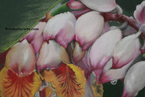 Detail of flowers Raindrops on Shell Ginger Flowers Original Pastel Painting