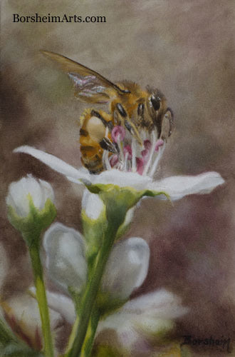 Harvest ~ Bee on Bradford Pear Tree Flower Oil Painting