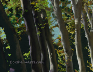 Detail of trees Row of Trees Fine Art Print Tree-lined Road Public Garden Florence Italy Tuscany Fine Art PRINT for Home Pastel Painting black paper