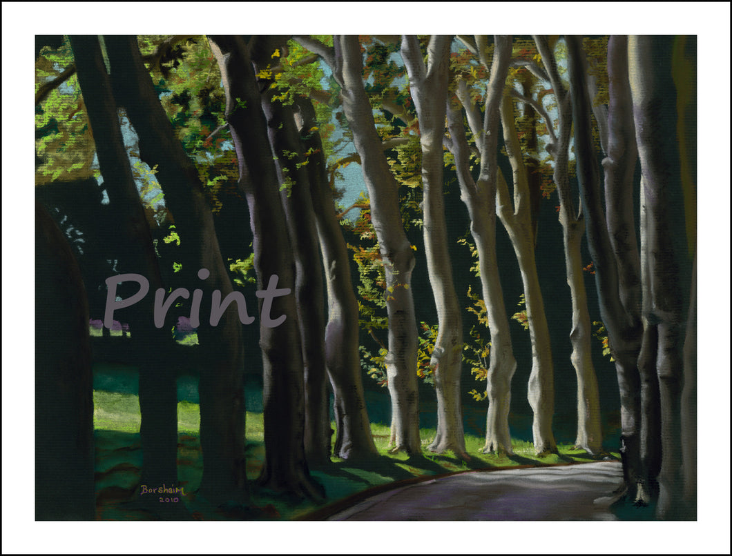 Row of Trees Fine Art Print Tree-lined Road Public Garden Florence Italy Tuscany Fine Art PRINT for Home Pastel Painting black paper