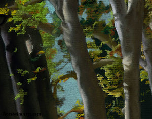 Detail of pastel art on black paper Giambologna's Trees Public Garden Sculpture Florence Italy Tuscany Art