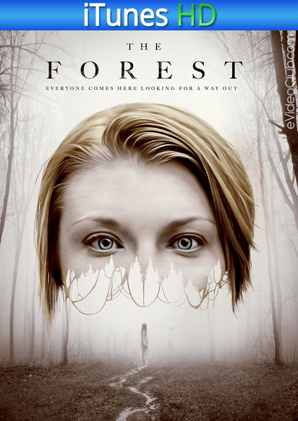 The Forest iTunes HD