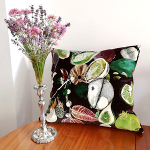 Christian Lacroix Velvet Cushion