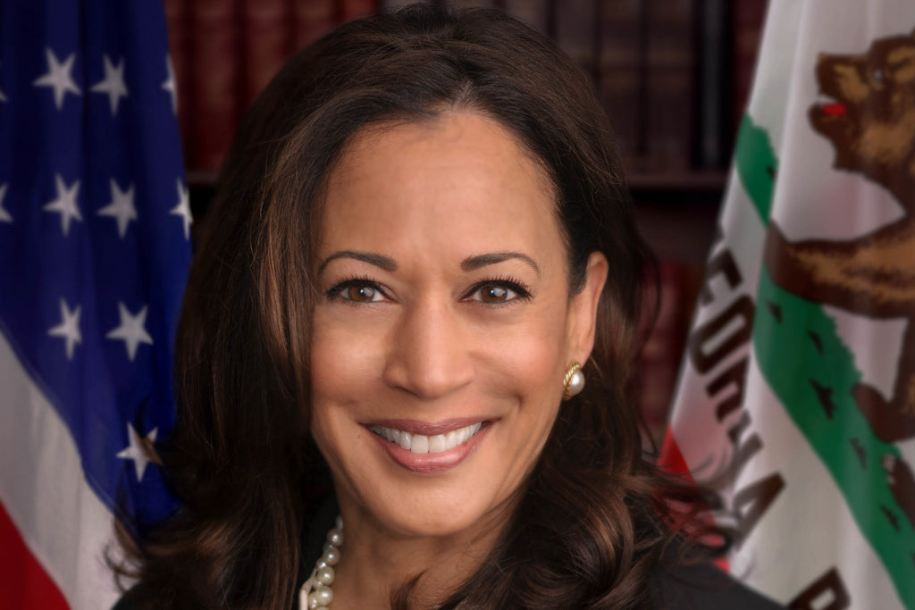 Kamala Harris: Our Fearless Vice President