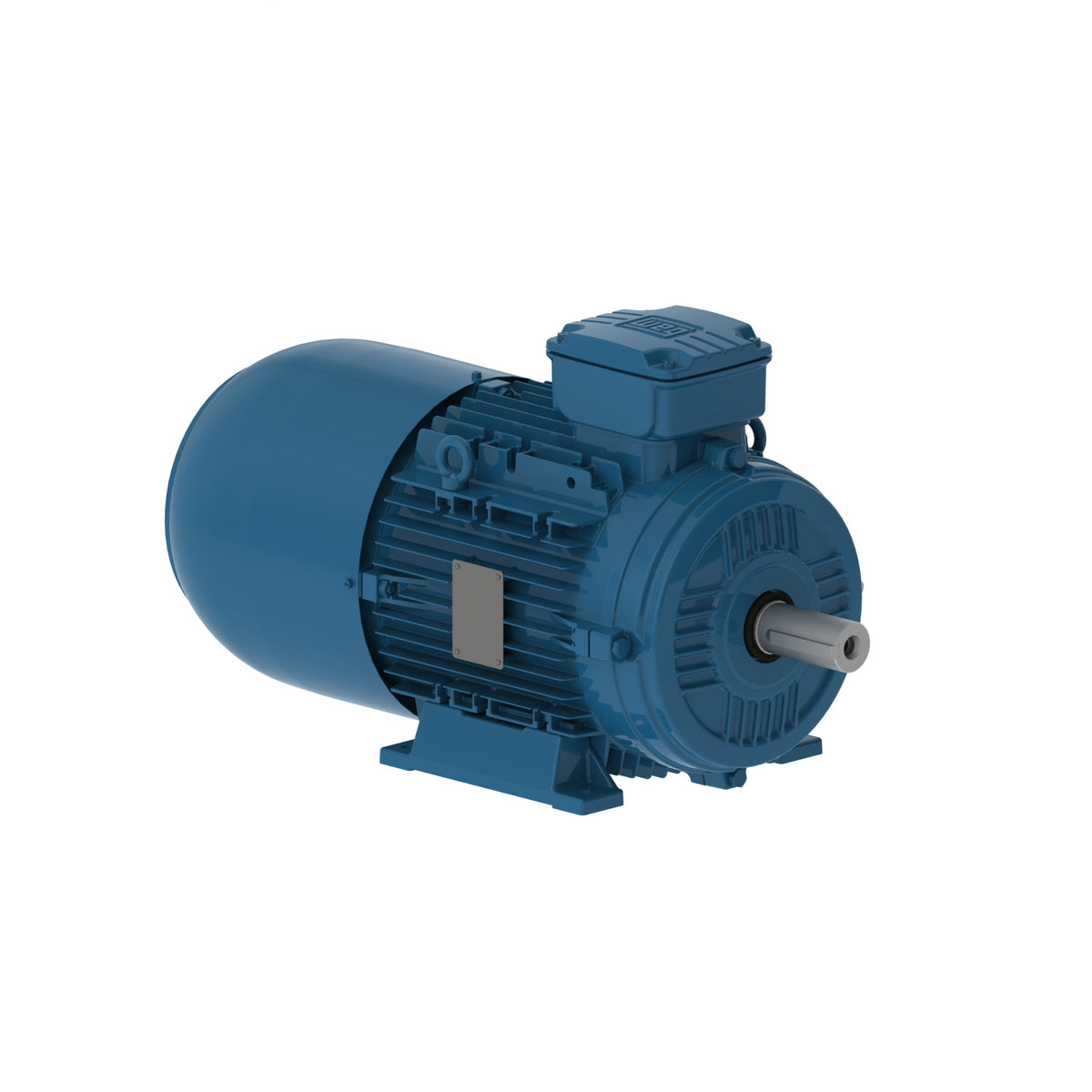 IEC FRAME SINGLE PHASE MOTORS