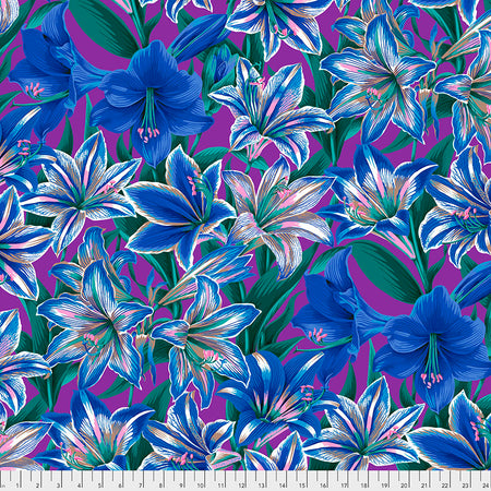 Amaryllis Blue - Philip Jacobs - Kaffe Fassett Collective August 2020