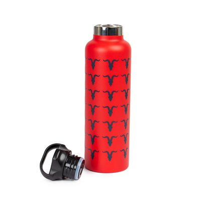 24oz. Stainless bottle w/ Handle - RED