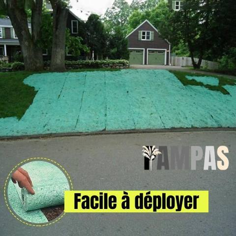 Tapis biodégradable de semences de gazon - Herbe-de-la-Pampa