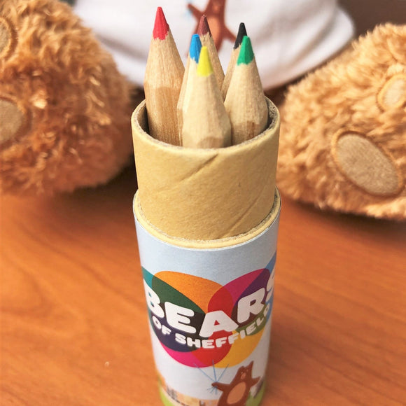 Bears of Sheffield - pencil pot