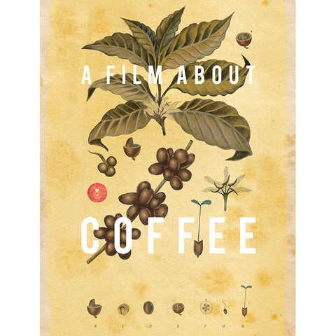Couverture du documentaire A Film About Coffee