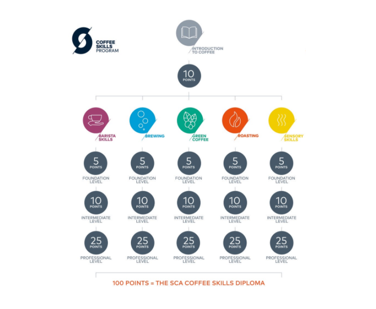 Les certifications de la Specialty Coffee Association